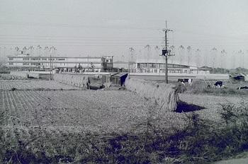1968年撮影栃工校全景.jpg