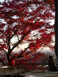 太平山の紅葉1.jpg
