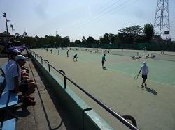 硬式テニス2.jpg