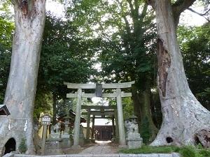 藤岡神社.jpg